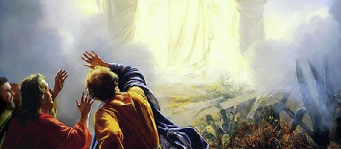 Bulletin - Transfiguration of Our Lord